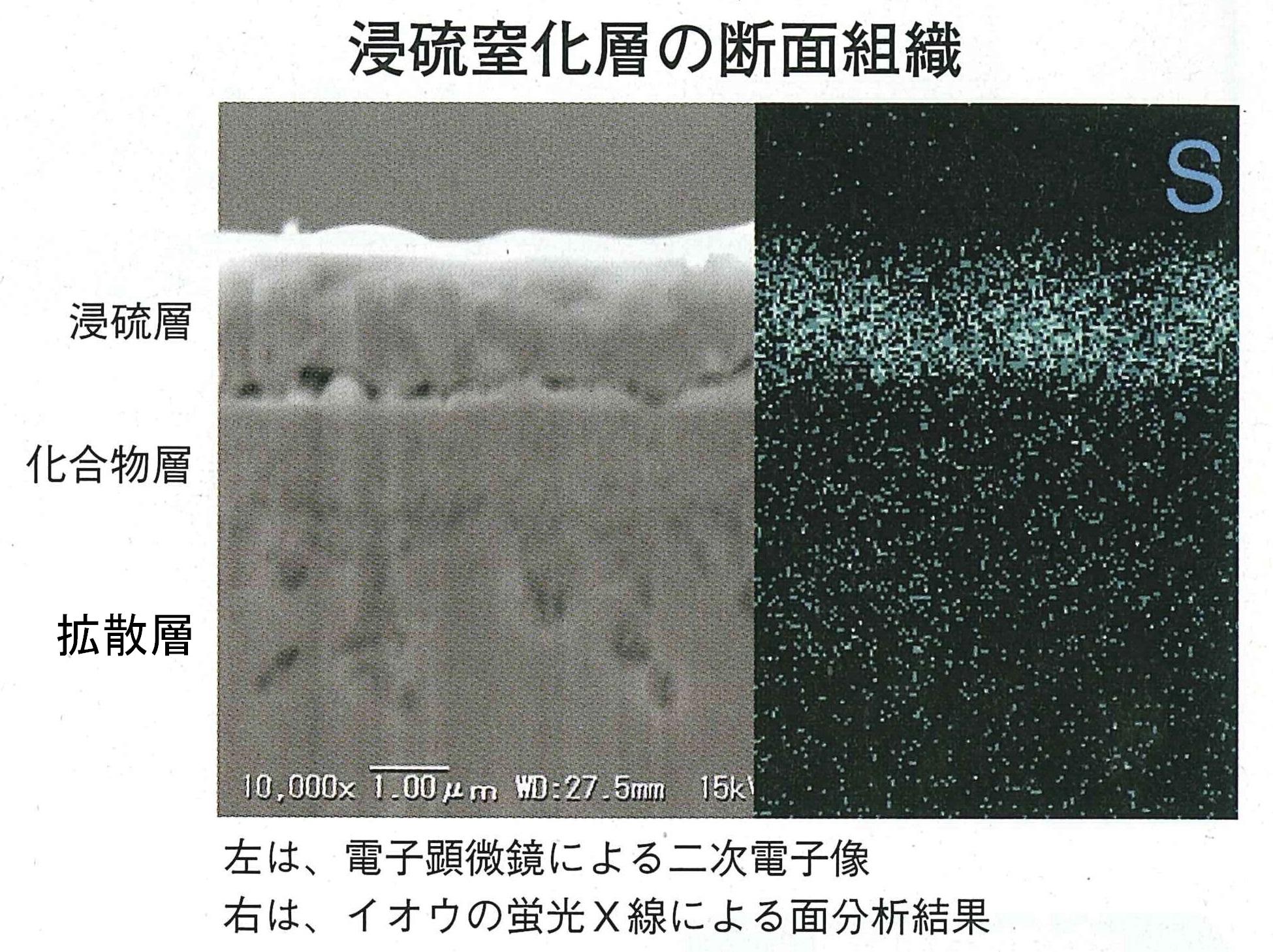 長岡電子 浸硫窒化層の断面
